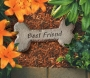 Best Friend - Dog Bone