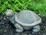 Peace Shell Turtle
