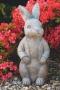 """24"""" Mr Bunny"""