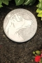Jack Russell Stepping Stone