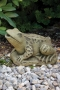Large Frog - Plumbed