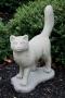 Plain Standing Cat