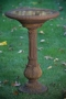 "34"" Victorian Fern Leaf Bird Bath"