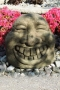 "20"" Laughing Garden Face"